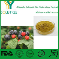 Ellagic Acid 30% Palm leaf Raspberry Fruit Extract/Raspberry Powder