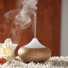 2014 The Mini Best Patener With Perfume Bulk is Aroma Diffuser GX