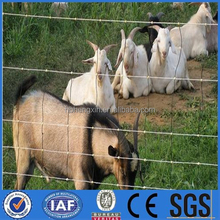 horse/sheep/goat/caw barns for ranch/farm/field/cattle fence(China Factory)