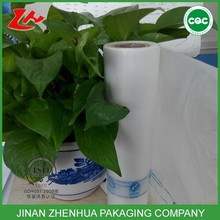 plastic hdpe flat bags on roll for food