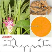 95% Curcumin of Turmeric Extract