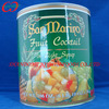 Canned Tropical Fruit Cocktail (425g )