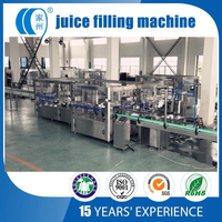 Small bottle concentrate juice filling machine