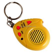 voice recording keychain voice recorder