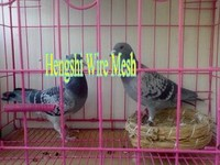 rabbit cage mats
