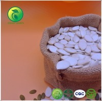 Trending Hot Products Craft Wholesale Artificial Pumpkin Seeds