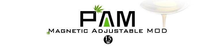 PAM_01