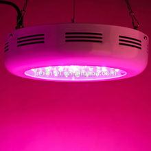 mi light factory sale RGB+W 4W color-changing bulbs greenhouse 3gp king led grow light