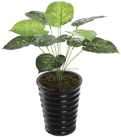 High Quality Evergreen Decorative Artificial Plants------0419