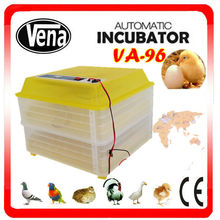 Tranparent mini chicken eggs incubator guangzhou automatic egg incubator