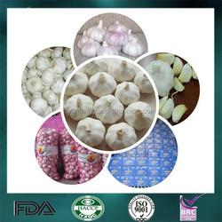 2015 Chinese High Quality Fresh Garlic with Good Market