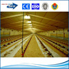 insulation painting or hot galvanized prefab steel structure poultry house
