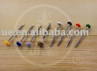 Plastic Head Stainless Steel Nail
