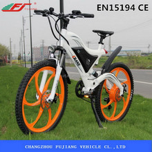 FUJIANG electric bicycle, electric bicycle china, electric bicycle battery box with EN15194