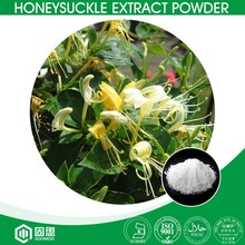 ISO,HALAL,KOSHER manufacturer supply high purity Chlorogenic acid from honeysuckle flower extract