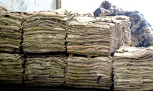 WET SALTED COW HIDE FOR SALE(CHEAP PRICE AND BEST GRADE)