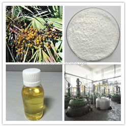 GMP factory High Quality Saw Palmetto Extract