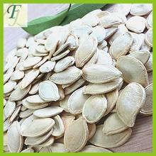 New Crop Cheap Price Pumpkin Seeds