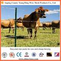Venta directa de la fábrica de la cerca del ganado y articulación de bisagra nudo campo de malla de la cerca para animales y articulación de bisagra campo esgrima y caballo de la cerca