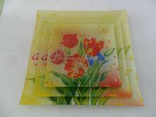 3pcs rectangular tempered glass plate/dish/tray set