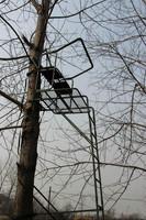 High quality aluminum folding steel coating tree ladder stand