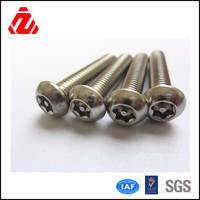Briliant quality competitive price stainless steel anti-theft screw