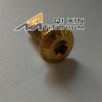 Titanium Torx M8 Bolt