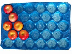 fruit and vegetable colorful plastic pp packaging tray