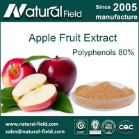HACCP Certifed Apple peel powder polyphenols 80% Manufacturer
