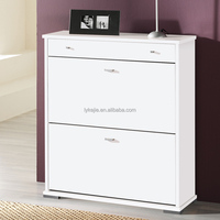 Home and Hotel Used Cheap Shoe Rack Design 2 Door White Shoe Cabinet Novel Shoes Cabinet Import Skills