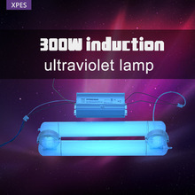 short-wavelength ultraviolet (UV-C) light for water purification 254nm induction UV lamp Germicidal UV Lamp