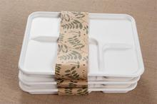 takeaway food containers 5 compartment from sugarcane