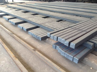 Hot Sale Billet Steel Prices Philippines