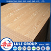 18mm bending wood chair commerical melamine faced plywood made by China LULI group