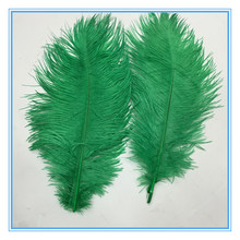 Best sale wholesale cheap dyed green ostrich feathers