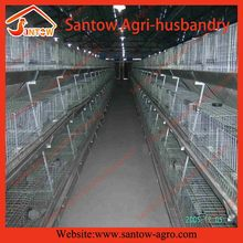 Special classical layer cage for chicks