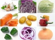 2014 seasonable fresh vegetables in different pack