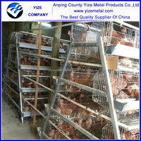 china manufacturer layer egg chicken cage poultry farm house design