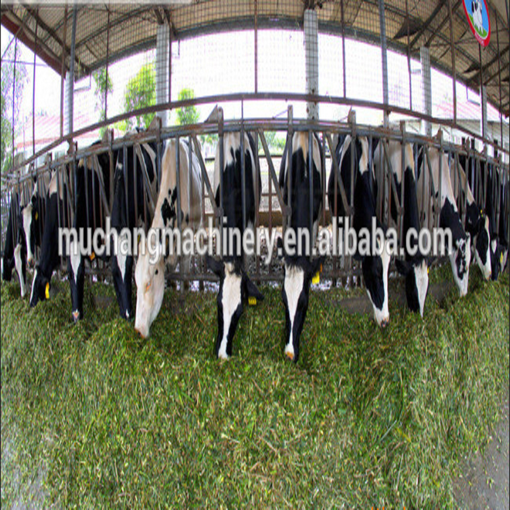 Animal poultry grass cutter
