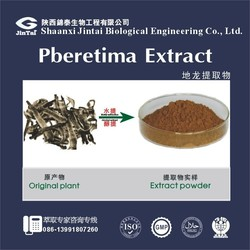 100% natural Supply with best price Pberetima