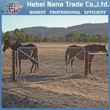 Newzeland designs horse / cattle fence / Farm fence for sale