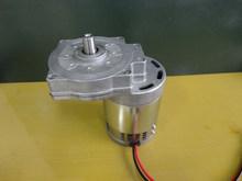 gear motor dc 24v