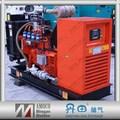 2015 biogás generador eléctrico / chp generador de biogás / biogás cogenerator con el certificado del CE de 50KW