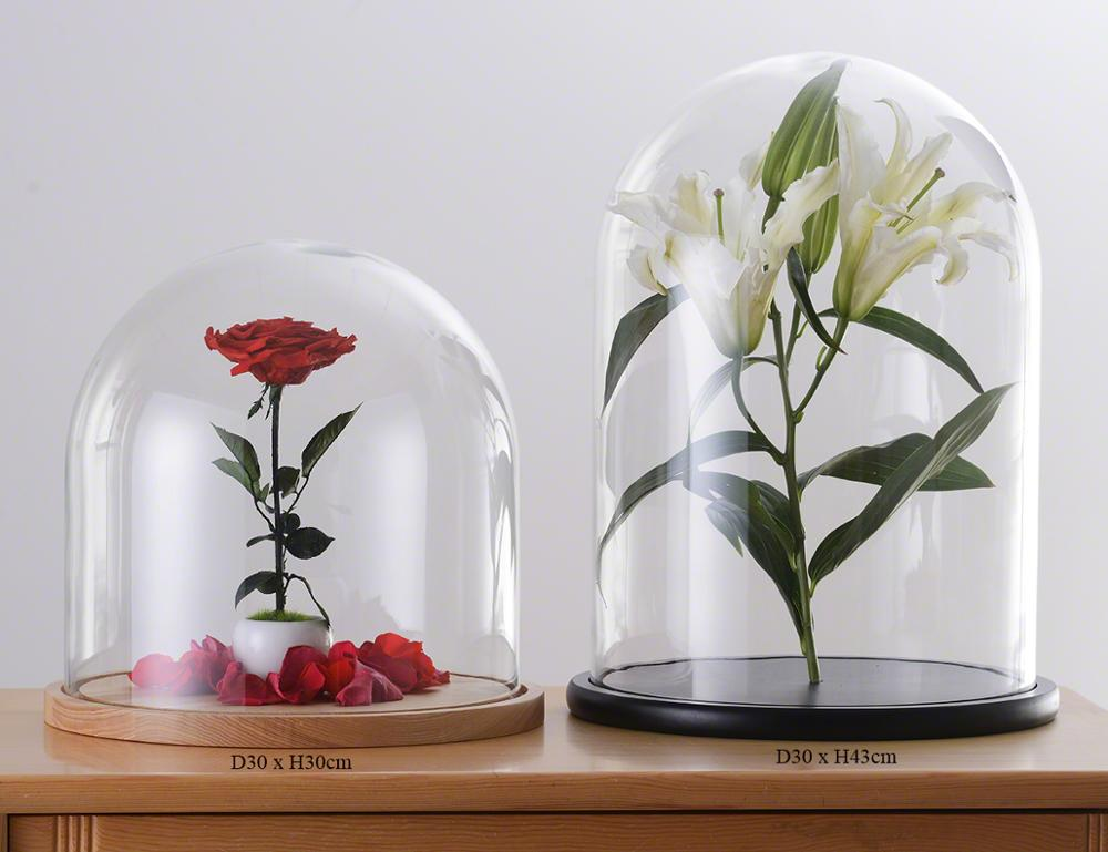 D30xH30cm-D30xH43cm-Glass-Dome-With-Wood-Base.jpg