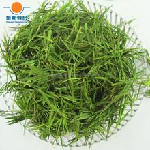 early spring organic bamboo leaf tea slimming tea