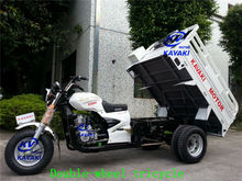 Max load tricycle/double wheel tricycle/5 wheel motorcycle