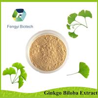 100% pure and natural ginkgo biloba extract