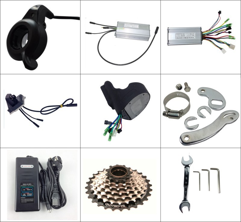 Top E-cycle electric bicycle brushless motor kit for sale 36v 250w bicycle electric kit