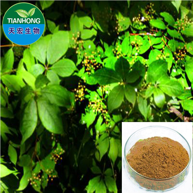 Organic Pure Natural Grape Seed Extract