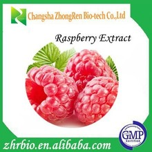Natural Raspberry Extract/Raspberry Extract Powder/Raspberry Ketone 4%